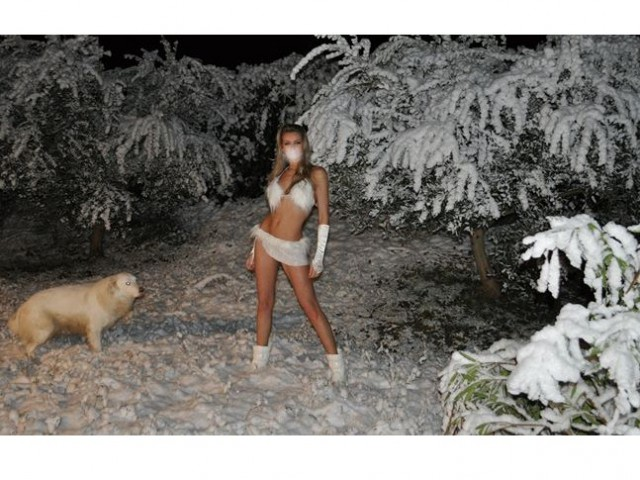 wolfbabe